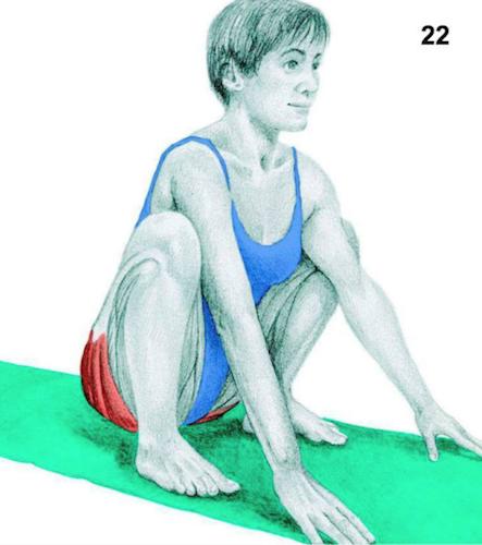 Beside Sport - Quels étirements pour quels muscles? -  -